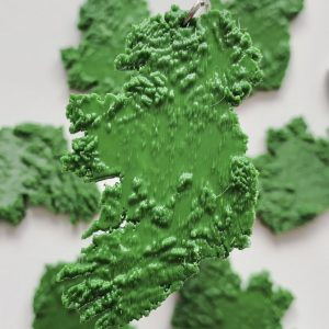 3D Ireland Keyring